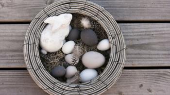 Osterbräuche in aller Welt: Mal lustig, mal skurril und manchmal auch gruselig