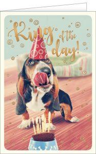 Grußkarten, Glückwunschkarten, Geburtstagskarten, Postkarten